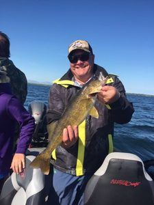 Walleye caught with MN Fishing Guide Todd Andrist